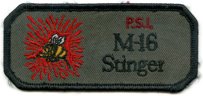PSI M-16 Stinger Patch.